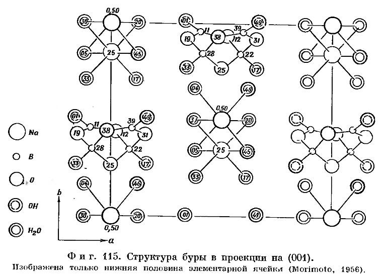 Фиг. 115. Структура буры в проекции на (001)