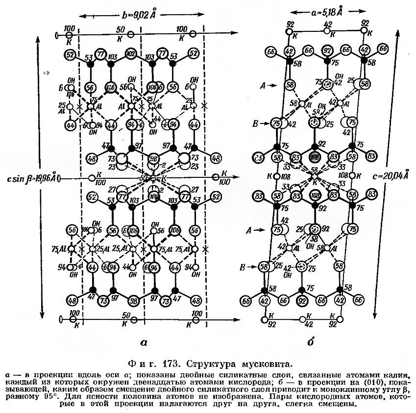 Фиг. 173. Структура мусковита