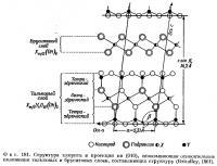 Фиг. 181. Структура хлорита в проекции на (010)