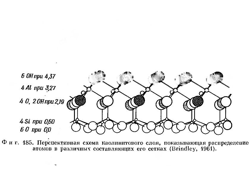 Фиг. 185. Перспективная схема каолинитового слоя