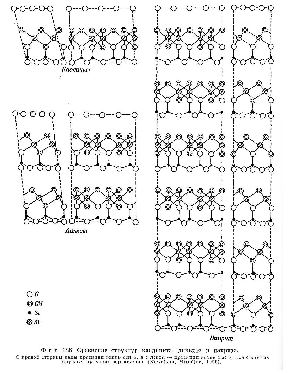 Фиг. 188. Сравнение структур каолинита, диккита и накрита
