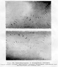 Фиг. 194. Вейссенбергограмма от монокристалла антигорита