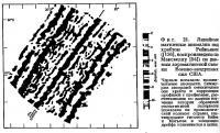 Фиг. 21. Линейные магнитные аномалии над хребтом Рейкьянес