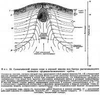 Фиг. 23. Схематический разрез коры и верхней мантии
