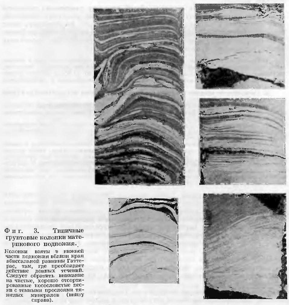 Фиг. 3. Типичные грунтовые колонки материкового подножия