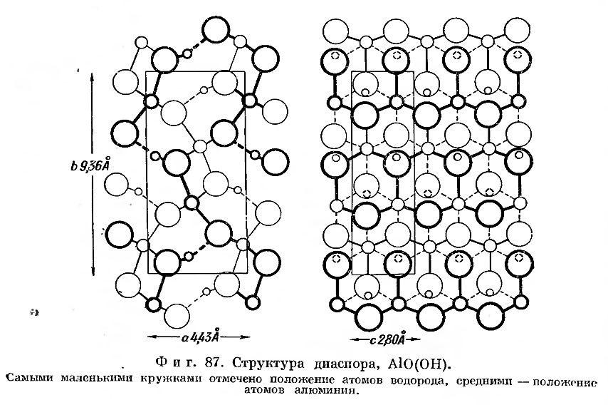 Фиг. 87. Структура диаспора