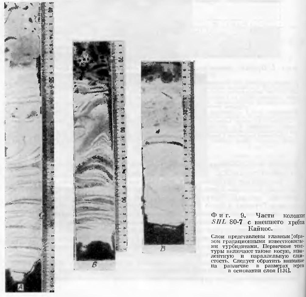 Фиг. 9. Части колонки SIIL 80-7 с внешнего хребта Кайкос