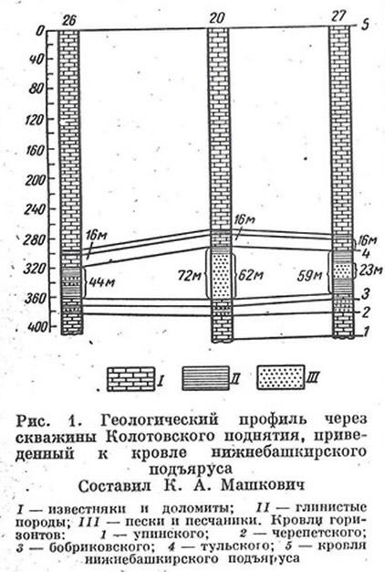 Рис. 1. Геологический профиль через скважины Колотовского поднятия