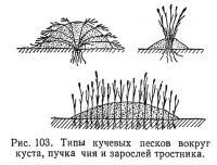 Рис. 103. Типы кучевых песков вокруг куста, пучкачия и зарослей тростника