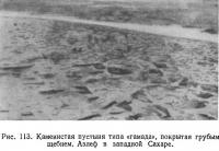 Рис. 113. Каменистая пустыня типа «гамада», покрытая грубым щебнем