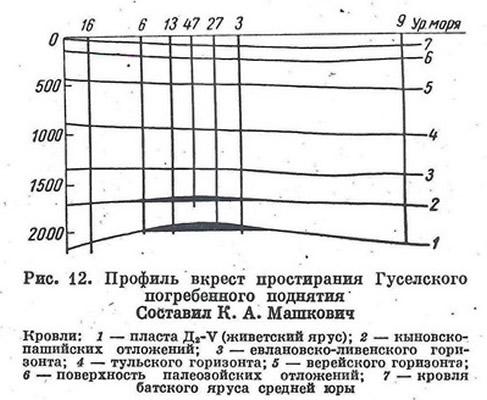 Рис. 12. Профиль вкрест простирания Гуселского погребенного поднятия