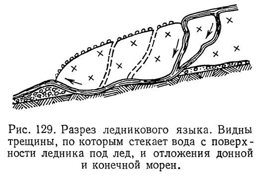 Рис. 129. Разрез ледникового языка