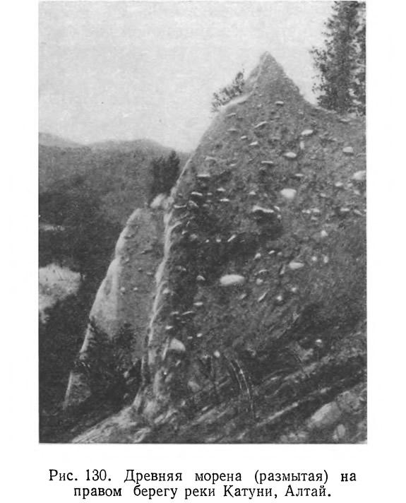 Рис. 130. Древняя морена (размытая) на правом берегу реки Катуни, Алтай