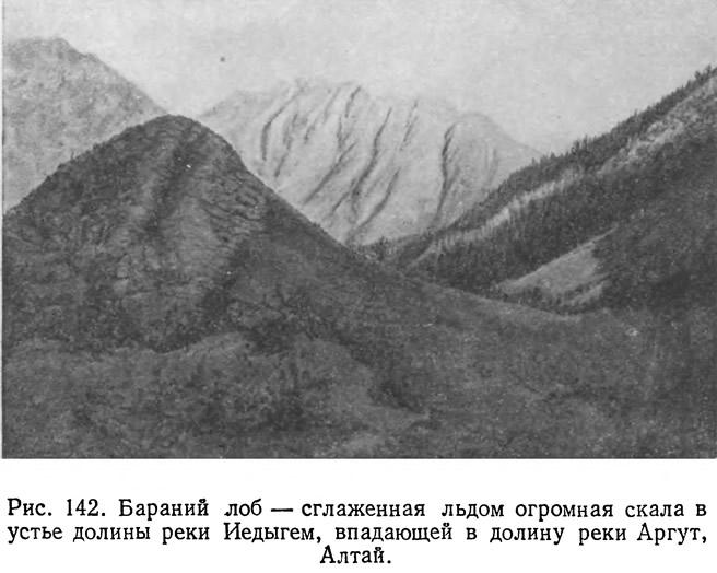 Рис. 142. Бараний лоб — сглаженная льдом огромная скала