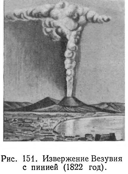 Рис. 151. Извержение Везувия с пинией (1822 год)