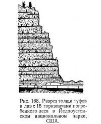 Рис. 168. Разрез толщи туфов и лаве 15 горизонтами погребенного леса