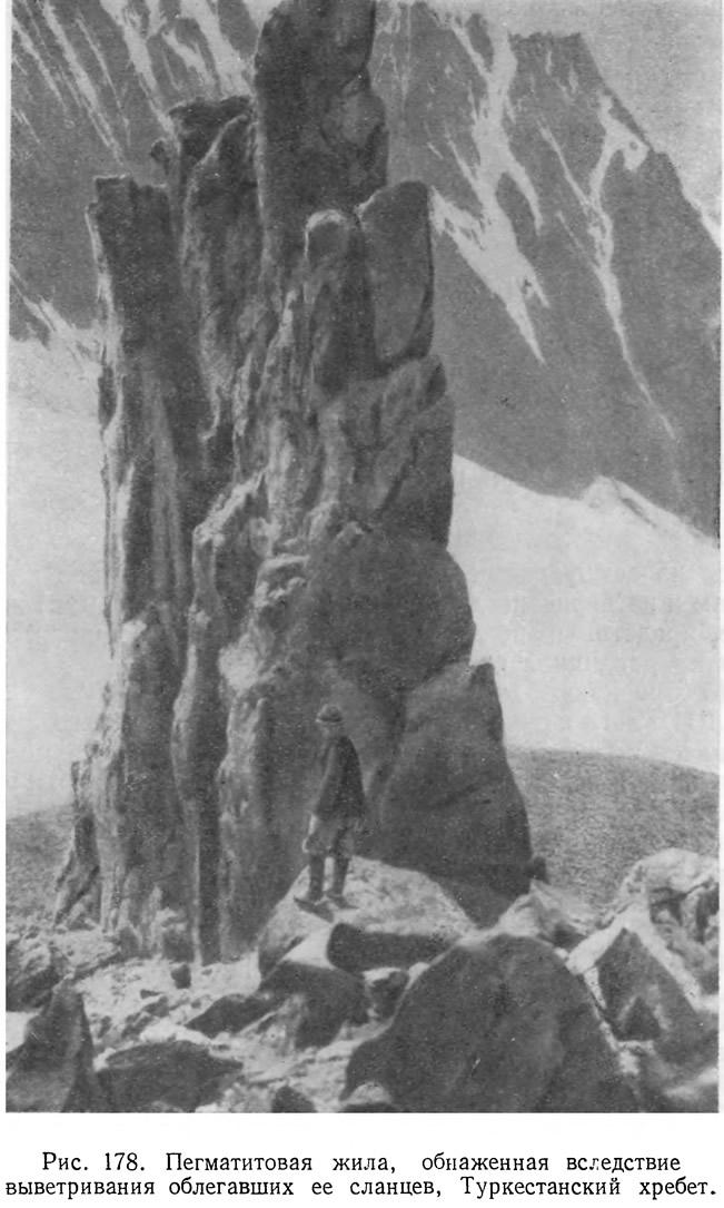Рис. 178. Пегматитовая жила, обнаженная вследствие выветривания облегавших ее сланцев