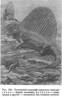 Рис. 240. Пустынный ландшафт пермского периода