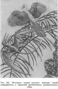 Рис. 241. Летающие ящеры юрского периода