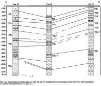 Рис. 2.6. Антологический профиль по скв. 42-44-45