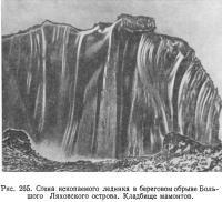 Рис. 265. Стена ископаемого ледника в береговом обрыве Большого Ляховского острова