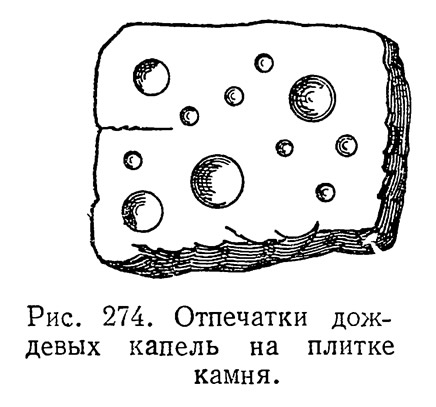 Рис. 274. Отпечатки дождевых капель на плитке камня
