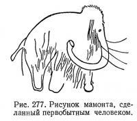 Рис. 277. Рисунок мамонта, сделанный первобытным человеком