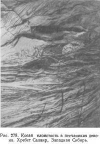 Рис. 278. Косая слоистость в песчаниках девона
