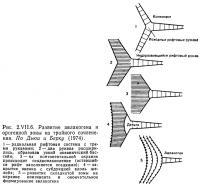 Рис. 2.VII.6. Развитие авлакогена и орогенной зоны из тройного сочленения