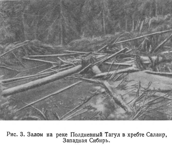 Рис. 3. Залом на реке Полдневный Тагул в хребте Салаир, Западная Сибирь