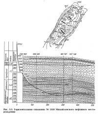 Рис. 3.3. Горизонтальная скважина №1418 Михайловского нефтяного месторождения