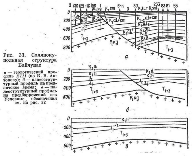 Рис. 33. Солянокупольная структура Байчунас