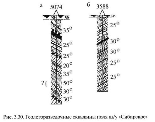 Рис. 3.30. Геологоразведочные скважины поля ш/у «Сибирское»