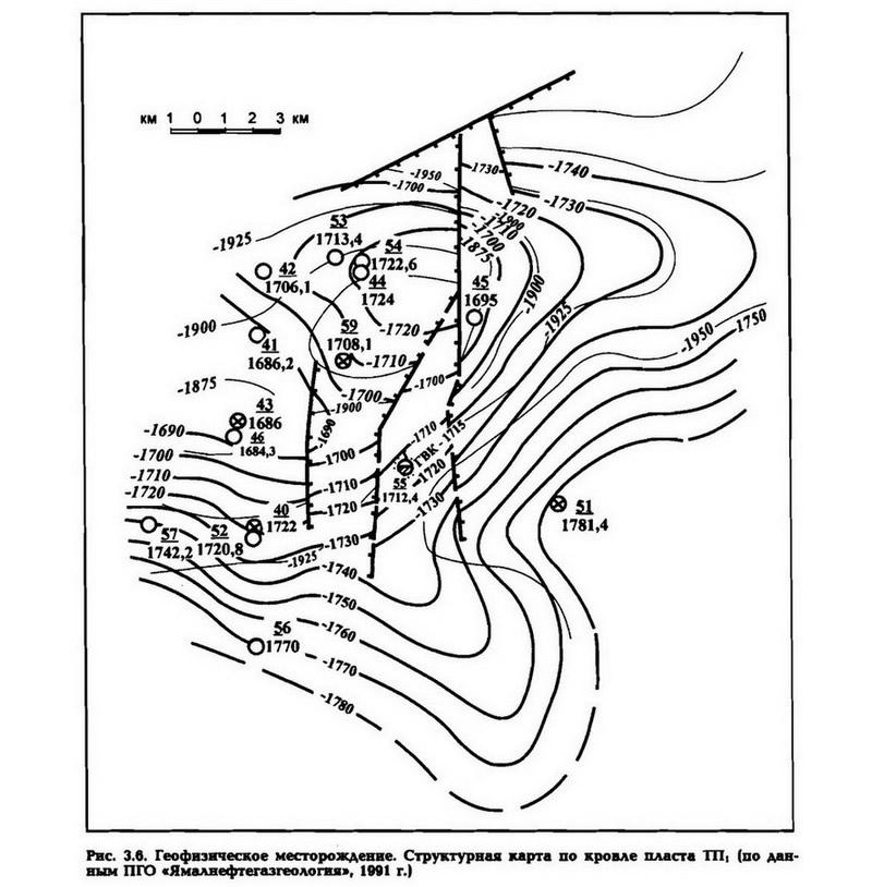 Рис. 3.6. Геофизическое месторождение. Структурная карта по кровле пласта ТП1