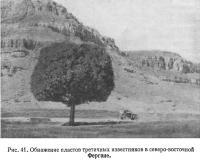Рис. 41. Обнажение пластов третичных известняков в северо-восточной Фергане