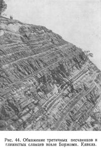 Рис. 44. Обнажение третичных песчаников и глинистых сланцев возле Боржоми