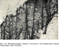 Рис. 4.5. Микрофотография кливажа скольжения