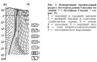 Рис. 5. Поперечный профильный разрез месторождения Сиазань