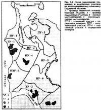 Рис. 5.2. Схема размещения эталонных и подсчетных участков по альб-сеноманскому комплексу