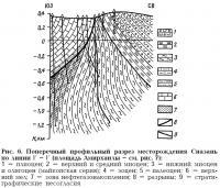Рис. 6. Поперечный профильный разрез месторождения Сиазань по линии