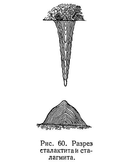 Рис. 60. Разрез сталактита и сталагмита