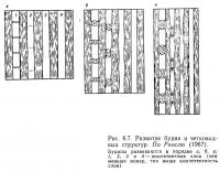 Рис. 6.7. Развитие будин и четковидных структур