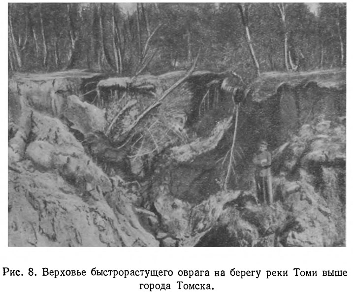Рис. 8. Верховье быстрорастущего оврага на берегу реки Томи выше города Томска