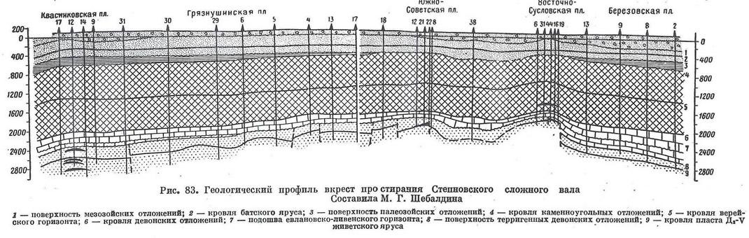 Рис. 83. Геологический профиль вкрест простирания Степновского сложного вала