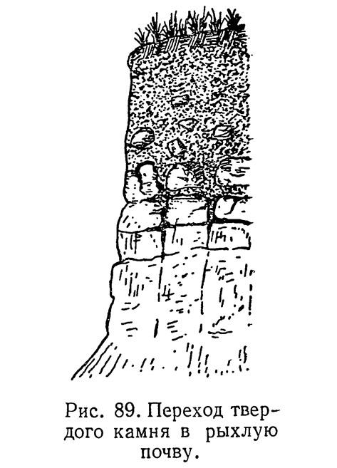 Рис. 89. Переход твердого камня в рыхлую почву