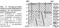 Рис. 9. Распределение нефтегазонасыщения по разрезу на месторождении Мурадханлы
