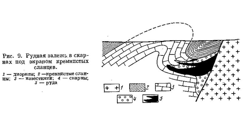 Рис. 9. Рудная залежь в скарнах под экраном кремнистых сланцев
