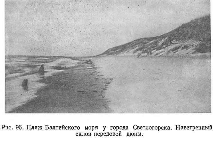 Рис. 96. Пляж Балтийского моря у города Светлогорска